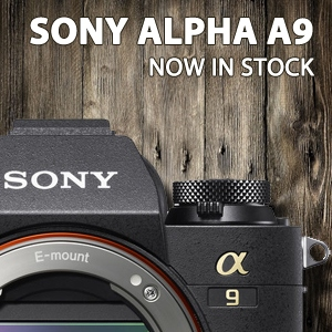 Sony Alpha A9 | In Stock
