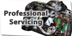 Professional Servicing